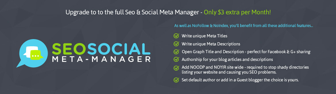 Upgrade to SEO & Social Manager